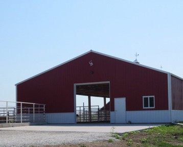 Cattle Barns in Iowa and Illinois by Greiner Buildings